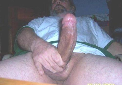 Free porn picture galleries