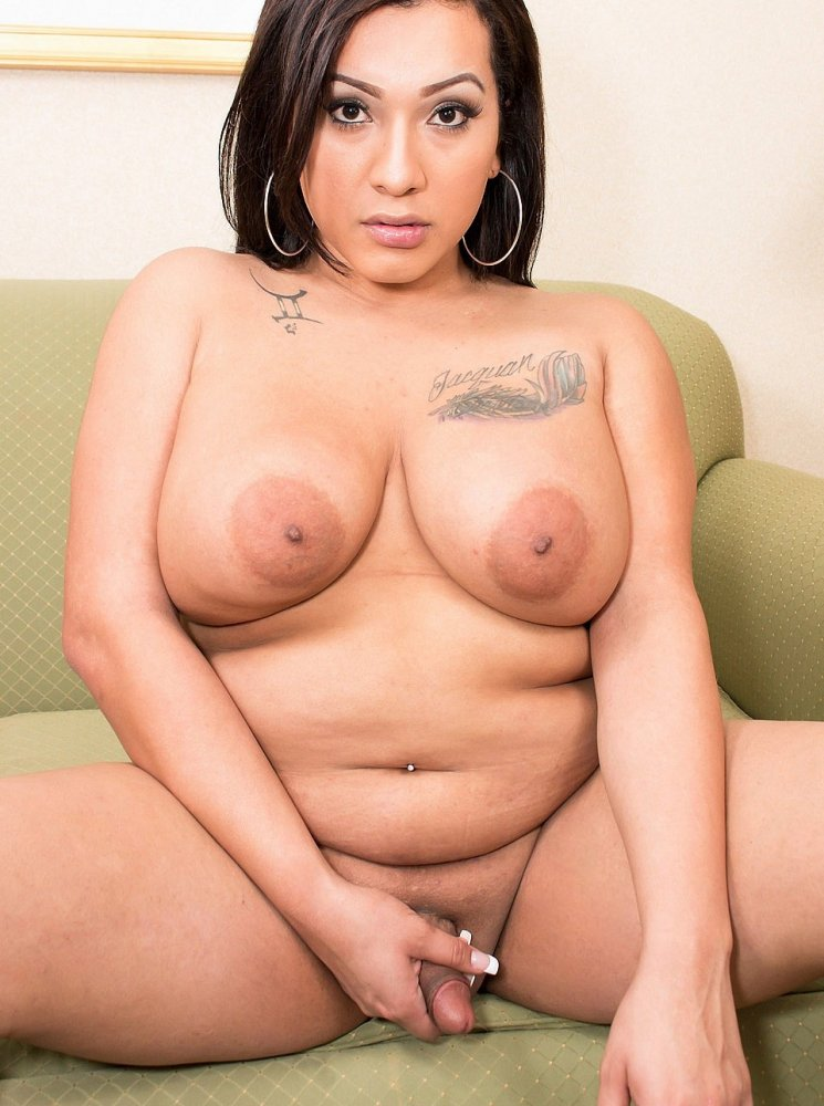 She retired hot fat chubby shemale with fat cock