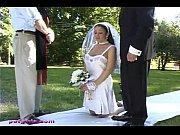 Jewell Marceau pet bride