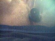 Порно ролики пышных смотреть онлайн