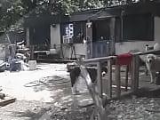Порно видео инцест брат и сетра с кончанием во внутрь