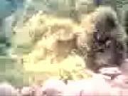 Групповой кастинг двух блондинок