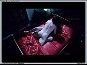 Порно видео мужик лижит писю девушки