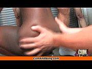 Видео писек сиповки королка и ладушки