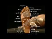 educational toe sucking
