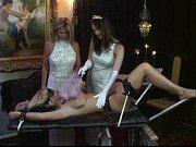 девушка с лабрадором на кровати порно