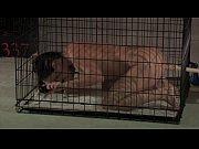 Секс с насадками для члена видео
