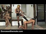 Порно видео жоское с красотками