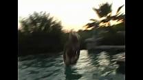 Alison Angel in het zwembad - Celebs  Babes - ...