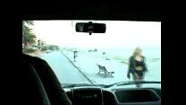 sluts street - carretera de Putas