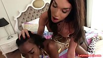 shemales jonelle brooks and jina in 3some