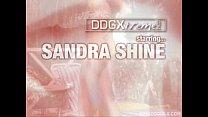 shine Sandra