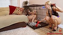 roxy raye gets knotted by doggie dick