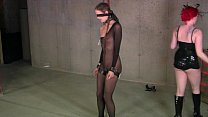 BDSM - Mistress Irony's Delight