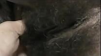 bucetuda e peluda Morena