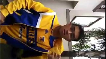 Videos Geis Gratis 45895456865787