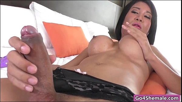 porn Free shemale jerkoff
