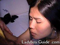 Thai ladyboy Parades For Sex 1