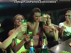 Sex striptease party in the club