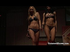 Two lovely strippers getting wild and horny