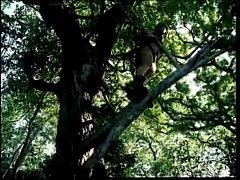 Vidos Porno Tarzan X YouPorncom