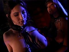 Hot lesbians using their toys & tongues-Get mor...