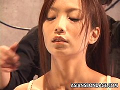 Asian sluit tied up and hanging around on a knot