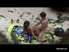 Watching The Wildlife Hot Beach Action
