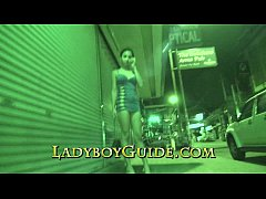 Genuine Thai Ladyboy Picked Up At Night