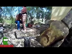 Hidden camera in the forest. RAF080