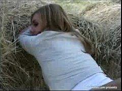Сеновал в поле