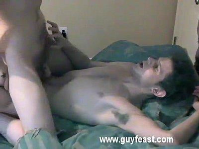 gay shorthair camera