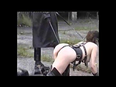 Exotica video: ANIMAL