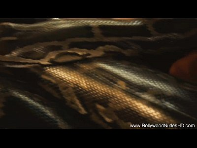 المقدسة الثعبان الثعبان تنمو جبهة تحرير مورو الإسلامية