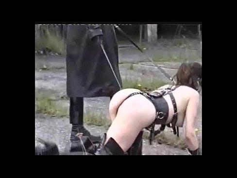 girl animal sex 2gp free download