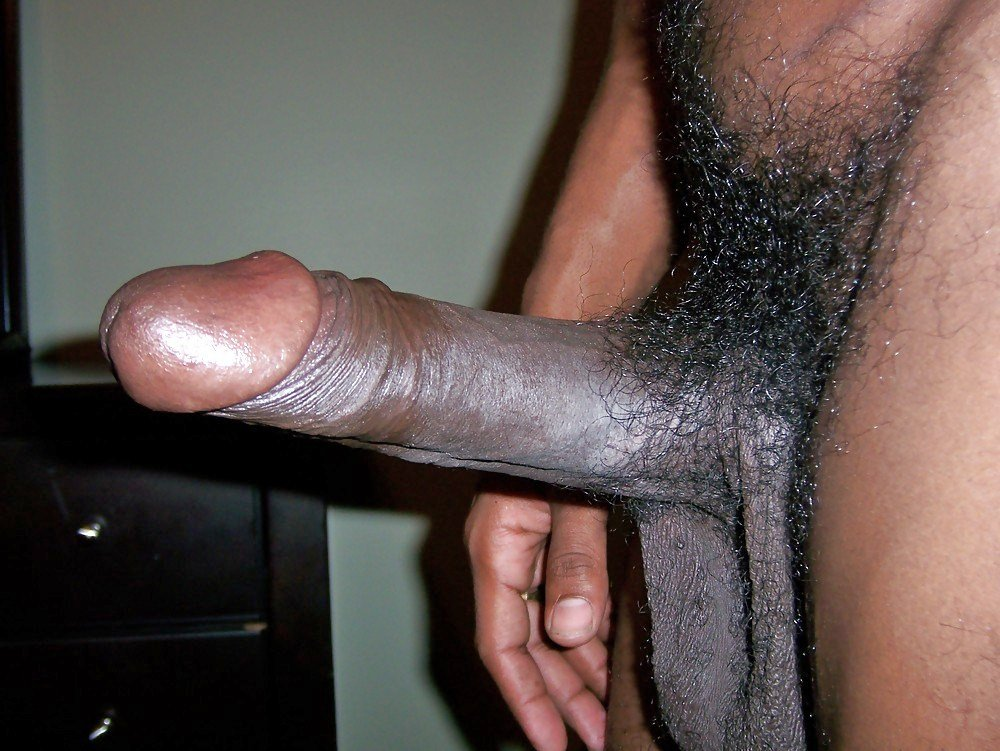 Hard Erect Black Dick Dangles Up And Down