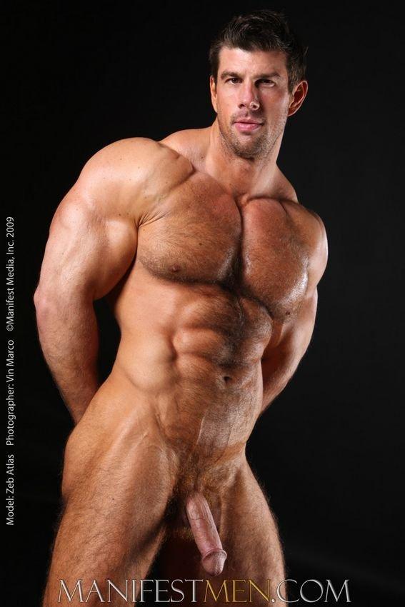 gay muscle men Meet