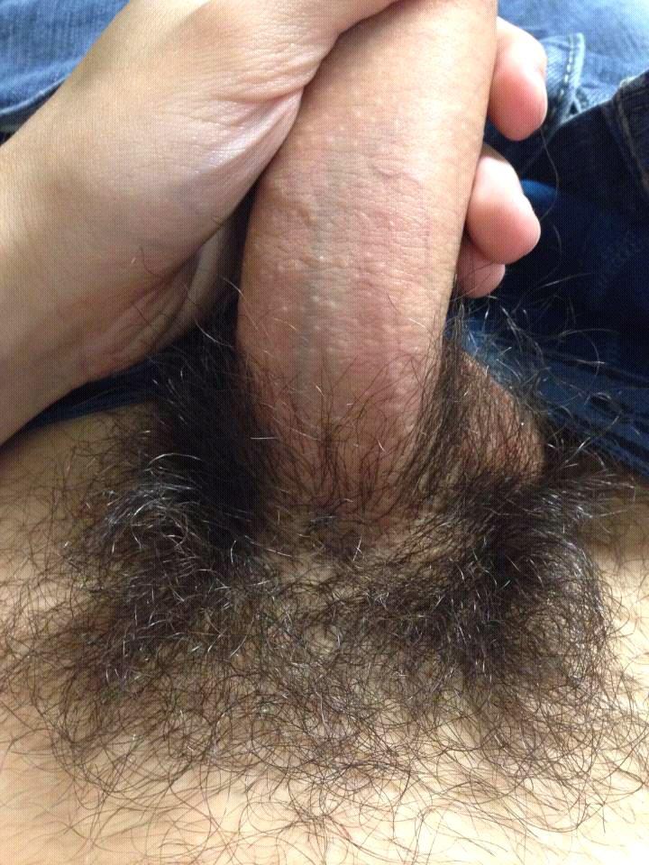 My Hairy Dick, Photo Album By Shadowninja2 - Xvideoscom-1594