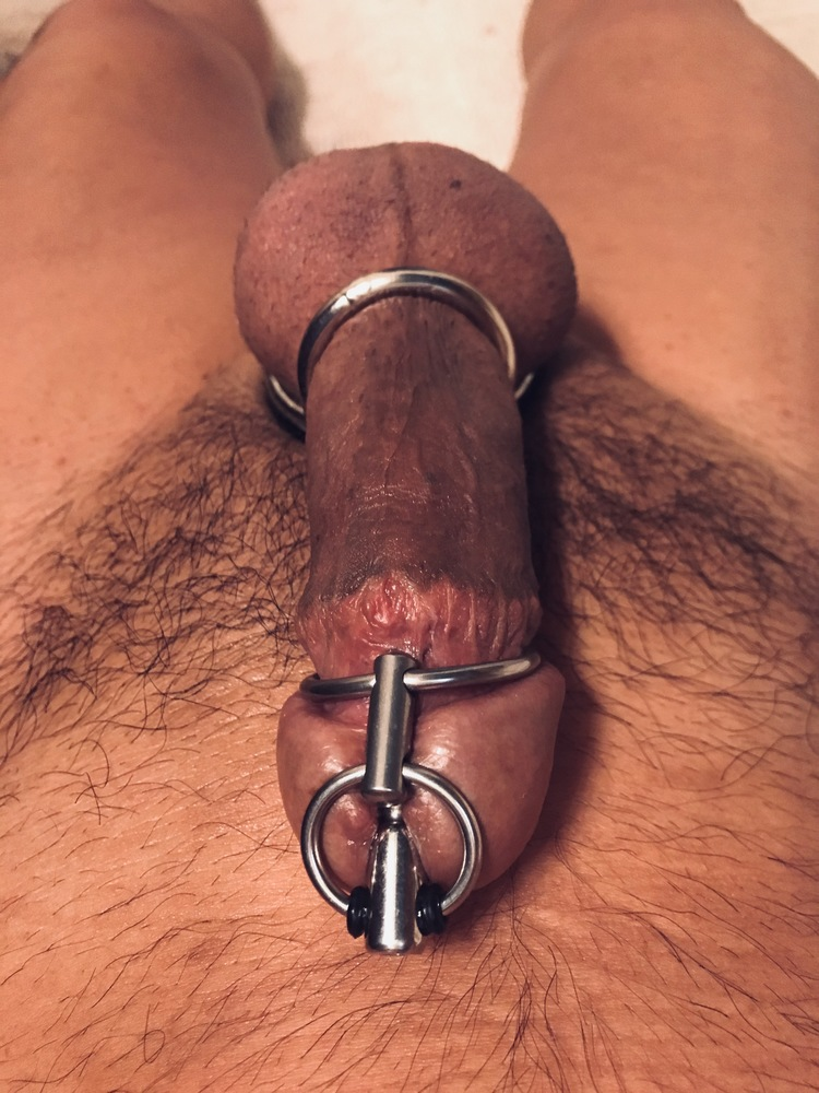 Penis Plug With Cage