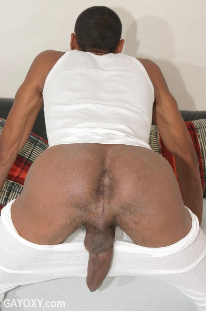 Naked gay black men ass holes pic ryker madison and tanner sharp gay hand cock