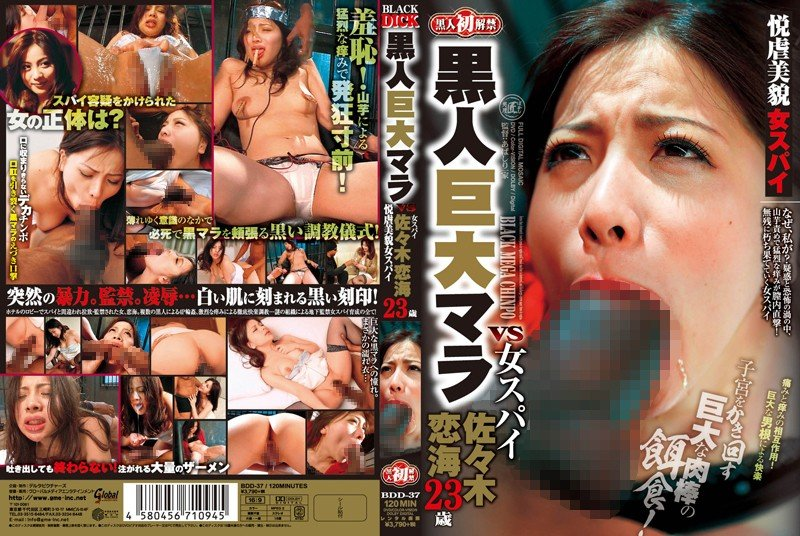 japanese-interracial-porn-dvd