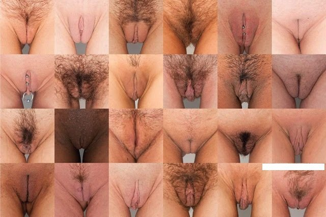 All kinds of porn