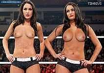 wwe-diva-the-bella-twins-hot-sex-fucking-images