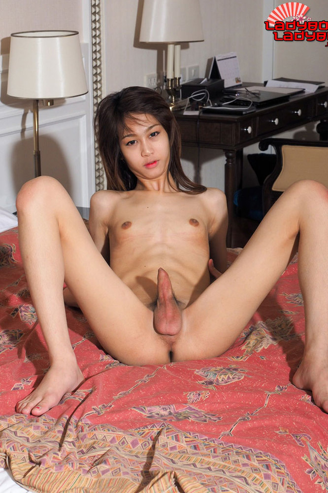 Cute ladyboy takes it bareback