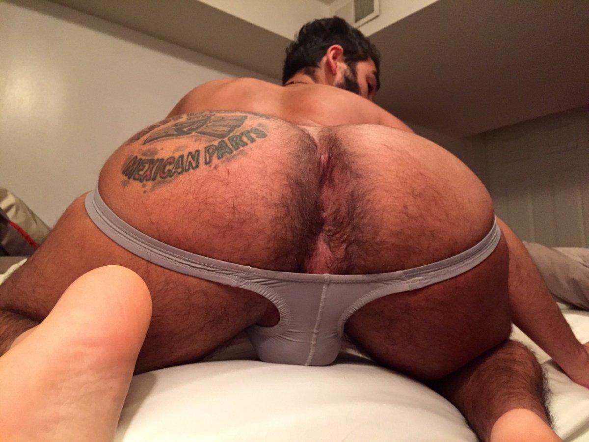 Hairy Ass Hole, Photo Album By Macho Kctpeludo - Xvideoscom-7112