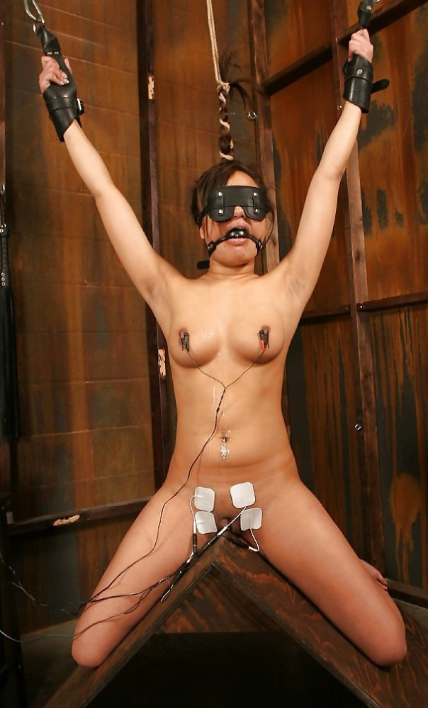Anal contraption