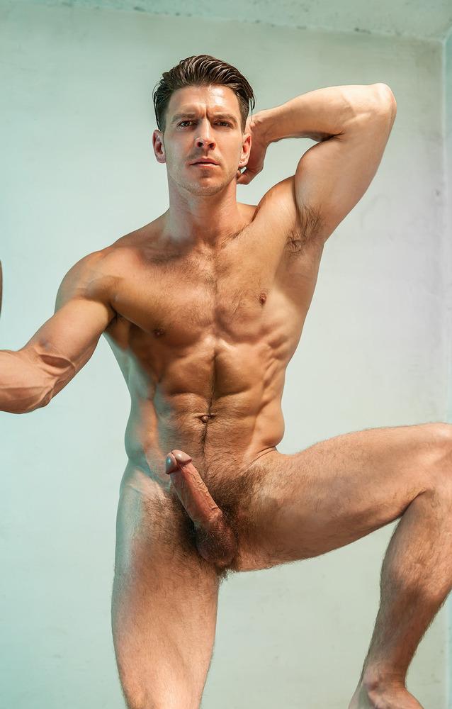 Big cock bi orgy