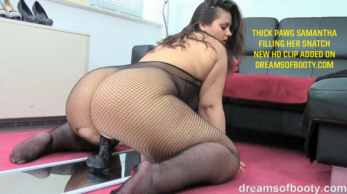 Pawg porn pictures