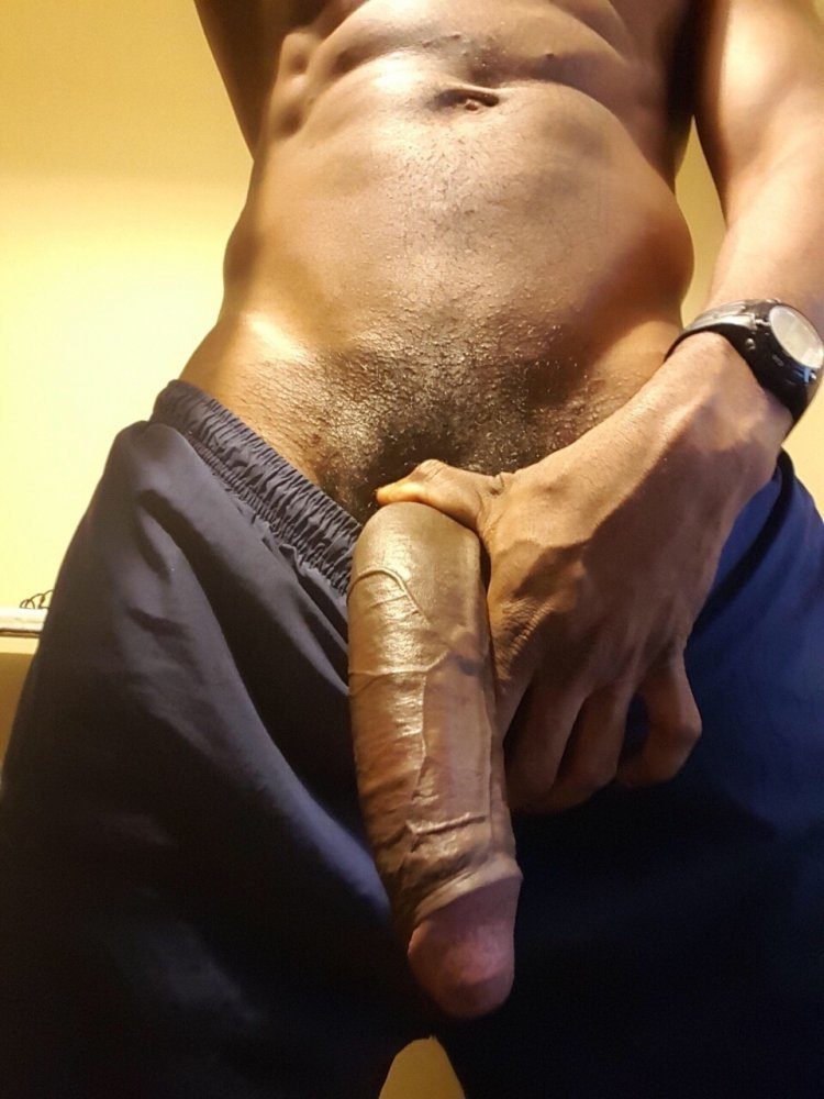 Largest penis on a man picture