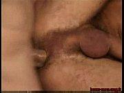 Picture Sexo na Parede- Entremetteur - Match maker b...